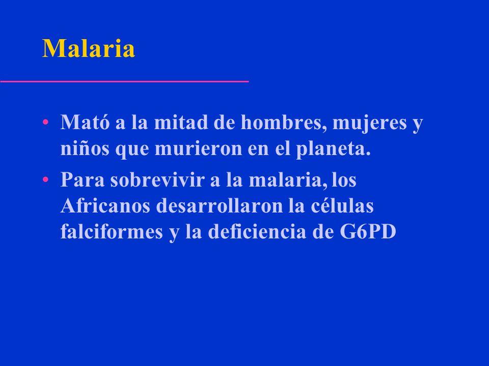Malaria Mató a la mitad de hombres, mujeres y niños que murieron en el planeta.