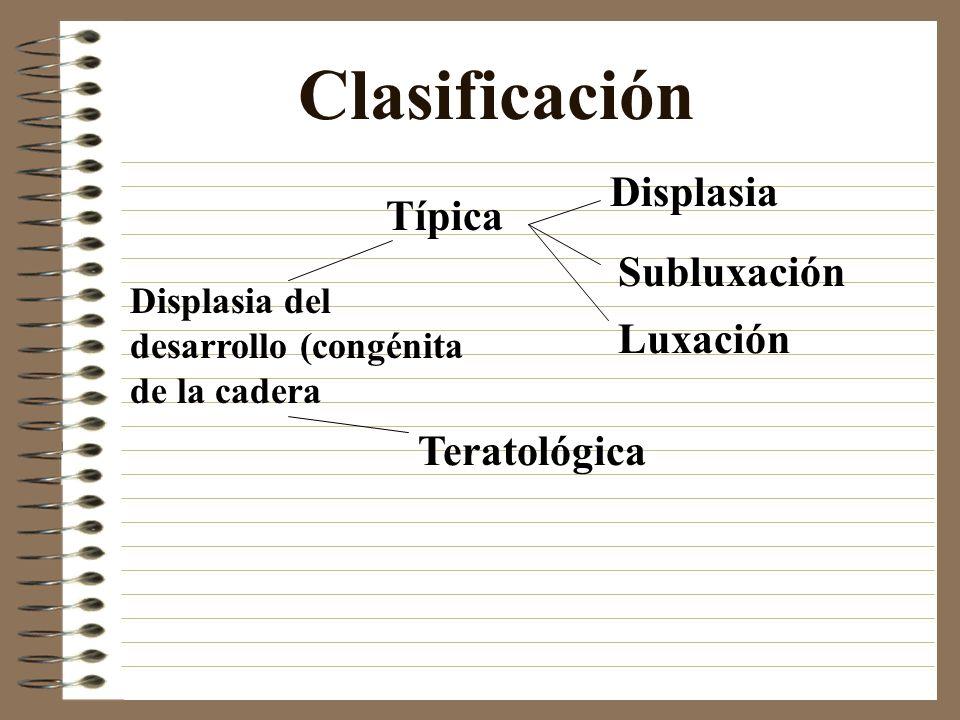 Clasificación Displasia Típica Subluxación Luxación Teratológica