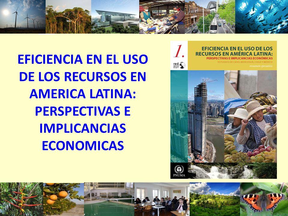 EFICIENCIA EN EL USO DE LOS RECURSOS EN AMERICA LATINA: PERSPECTIVAS E IMPLICANCIAS ECONOMICAS