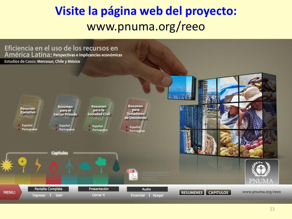 Visite la página web del proyecto: www.pnuma.org/reeo