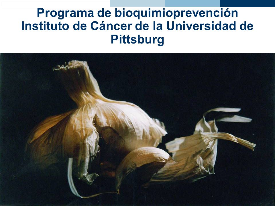 Programa de bioquimioprevención Instituto de Cáncer de la Universidad de Pittsburg