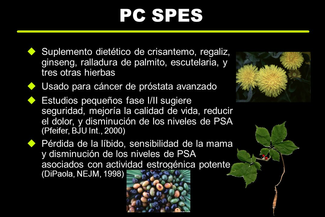 PC SPESSuplemento dietético de crisantemo, regaliz, ginseng, ralladura de palmito, escutelaria, y tres otras hierbas.