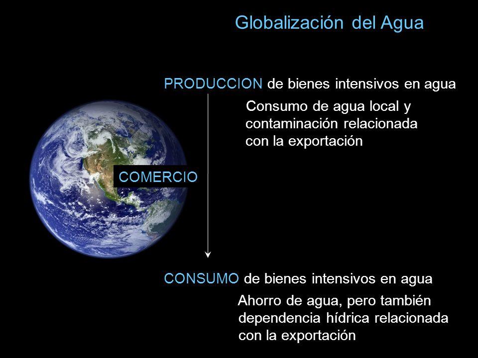 Globalización del Agua