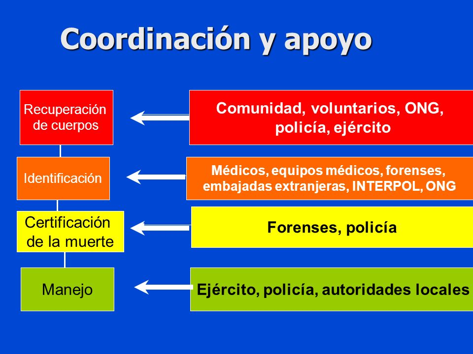 Coordinación y apoyo Comunidad, voluntarios, ONG, policía, ejército