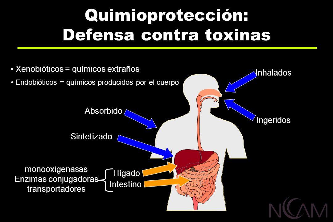 Quimioprotección: Defensa contra toxinas