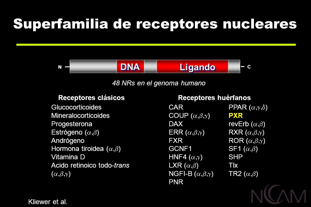 Superfamilia de receptores nucleares