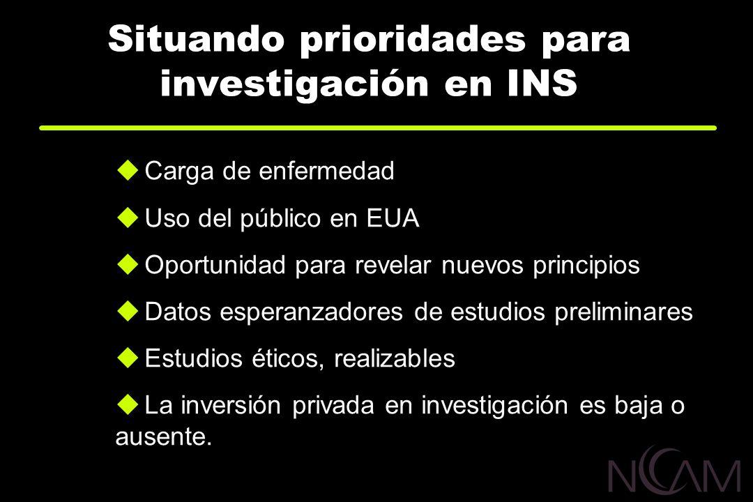 Situando prioridades para investigación en INS
