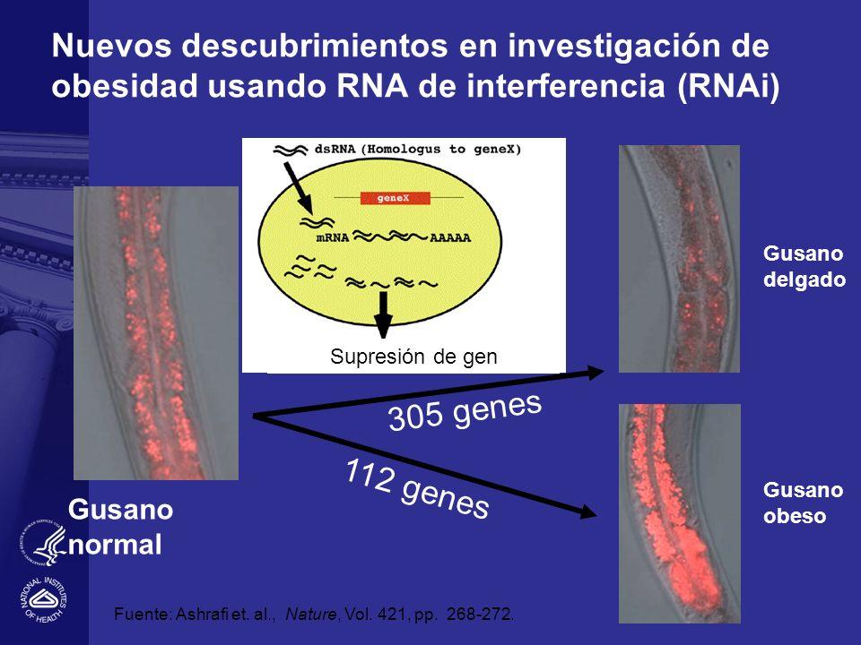 Nuevos descubrimientos en investigación de obesidad usando RNA de interferencia (RNAi)