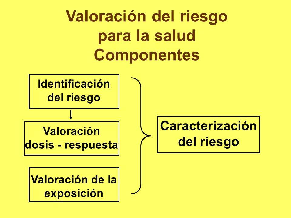 Valoración del riesgo para la salud Componentes