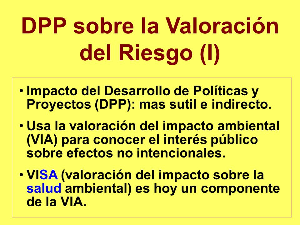 DPP sobre la Valoración del Riesgo (I)