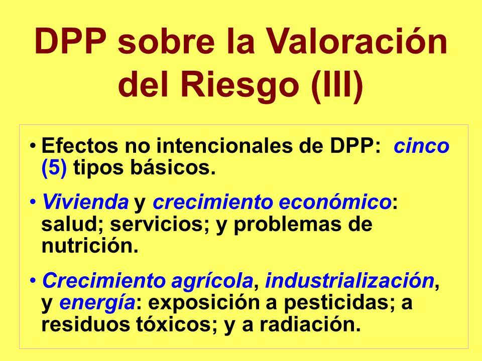 DPP sobre la Valoración del Riesgo (III)