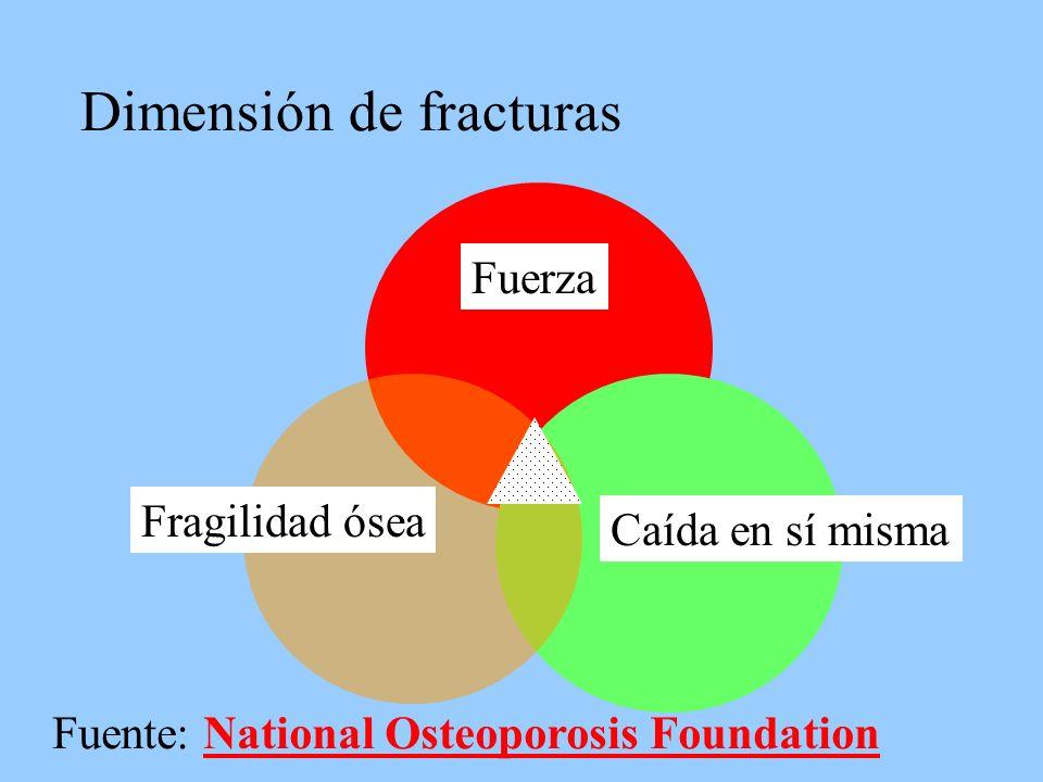 Dimensión de fracturas