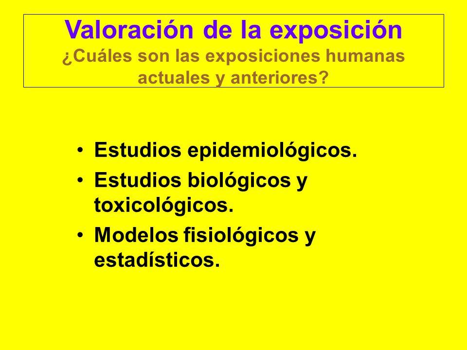 Valoración de la exposición ¿Cuáles son las exposiciones humanas actuales y anteriores