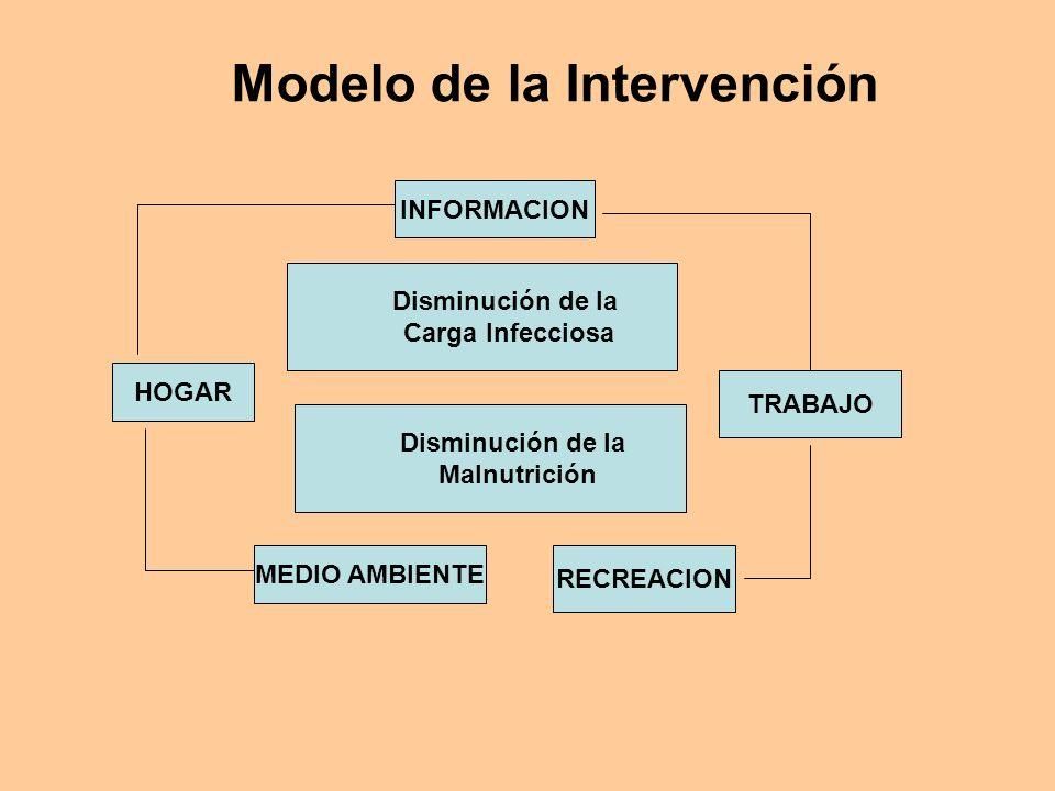 Modelo de la Intervención