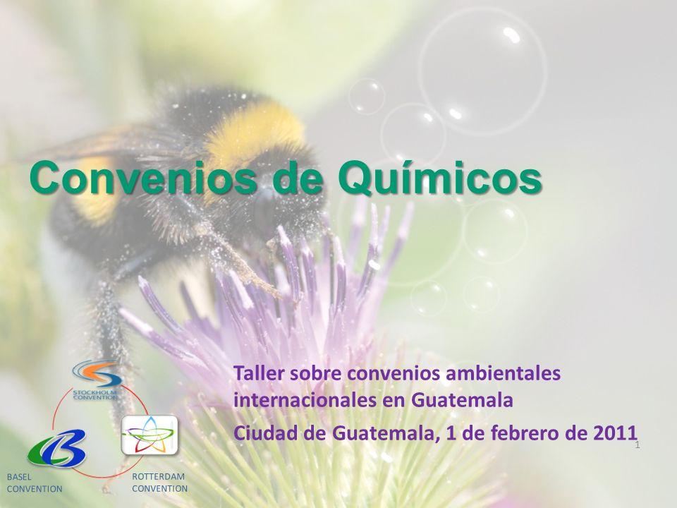 Convenios de Químicos Taller sobre convenios ambientales internacionales en Guatemala. Ciudad de Guatemala, 1 de febrero de 2011.
