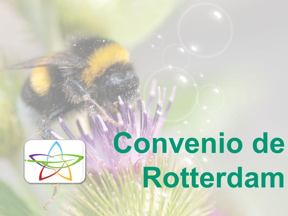 Convenio de Rotterdam 10