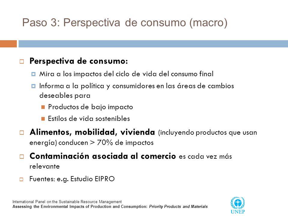 Paso 3: Perspectiva de consumo (macro)