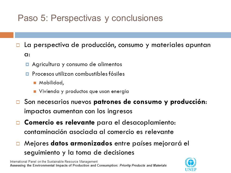 Paso 5: Perspectivas y conclusiones
