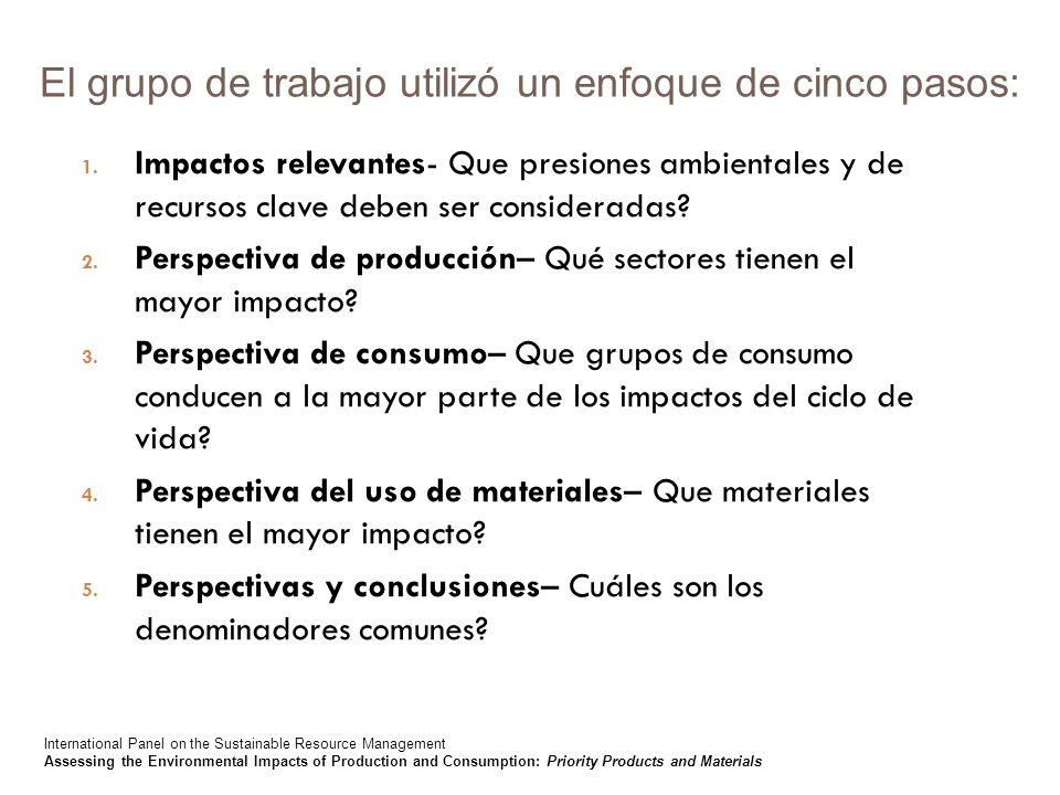 El grupo de trabajo utilizó un enfoque de cinco pasos: