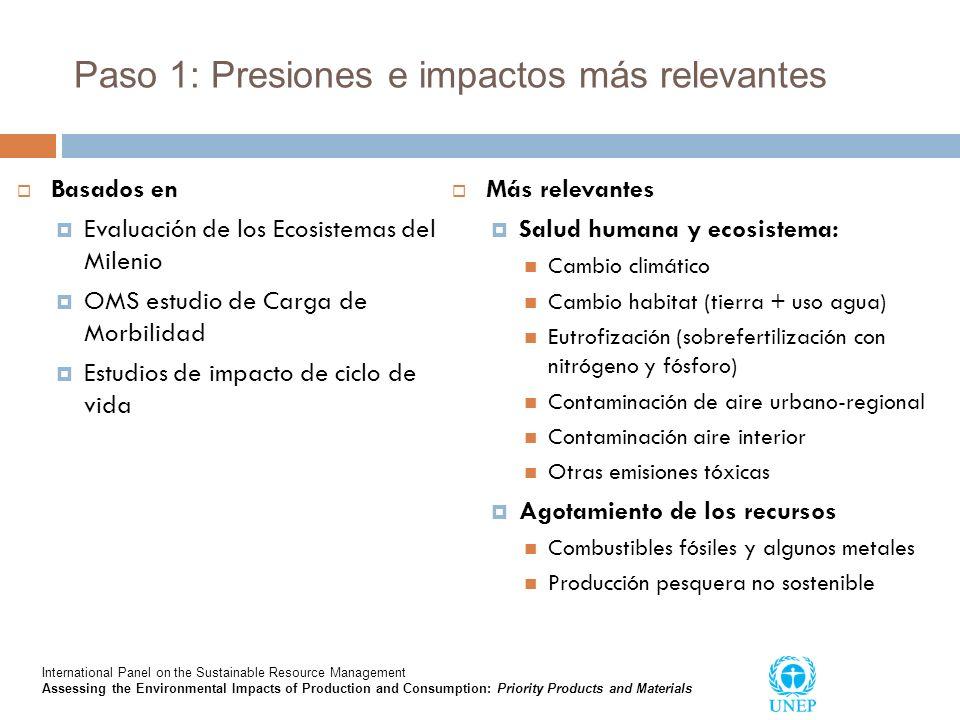 Paso 1: Presiones e impactos más relevantes