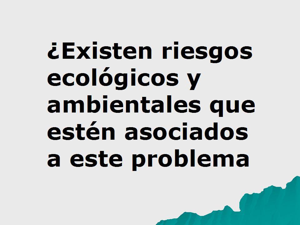¿Existen riesgos ecológicos y ambientales que estén asociados a este problema