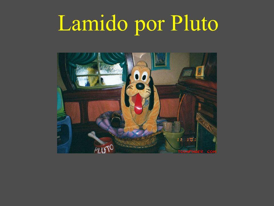 Lamido por Pluto