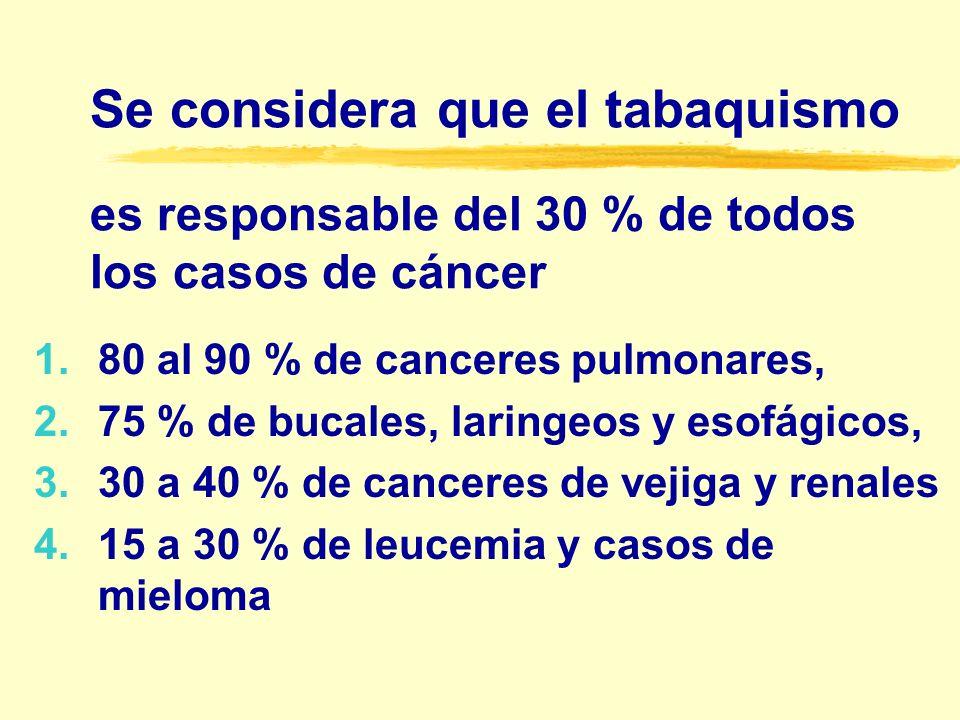 Se considera que el tabaquismo es responsable del 30 % de todos los casos de cáncer