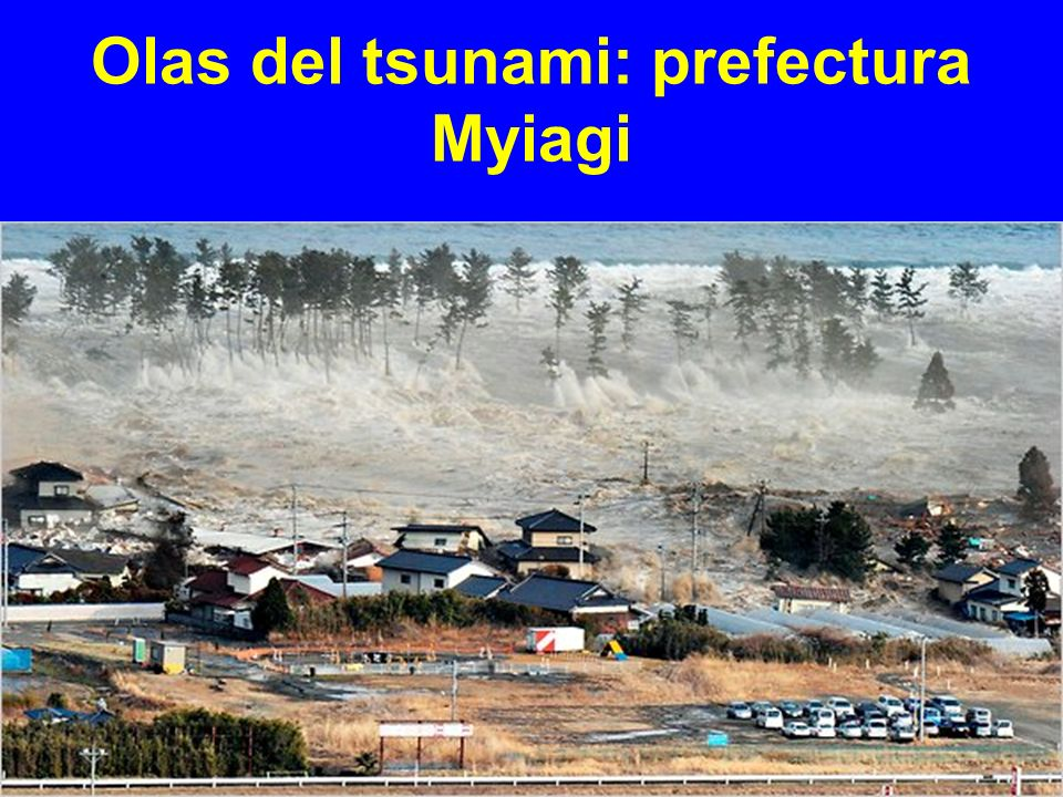 Olas del tsunami: prefectura Myiagi