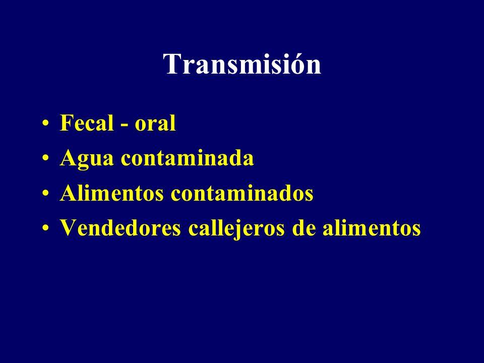 Transmisión Fecal - oral Agua contaminada Alimentos contaminados