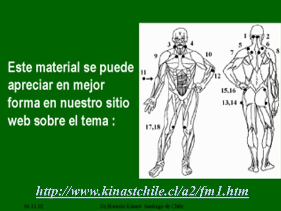 http://www.kinastchile.cl/a2/fm1.htm