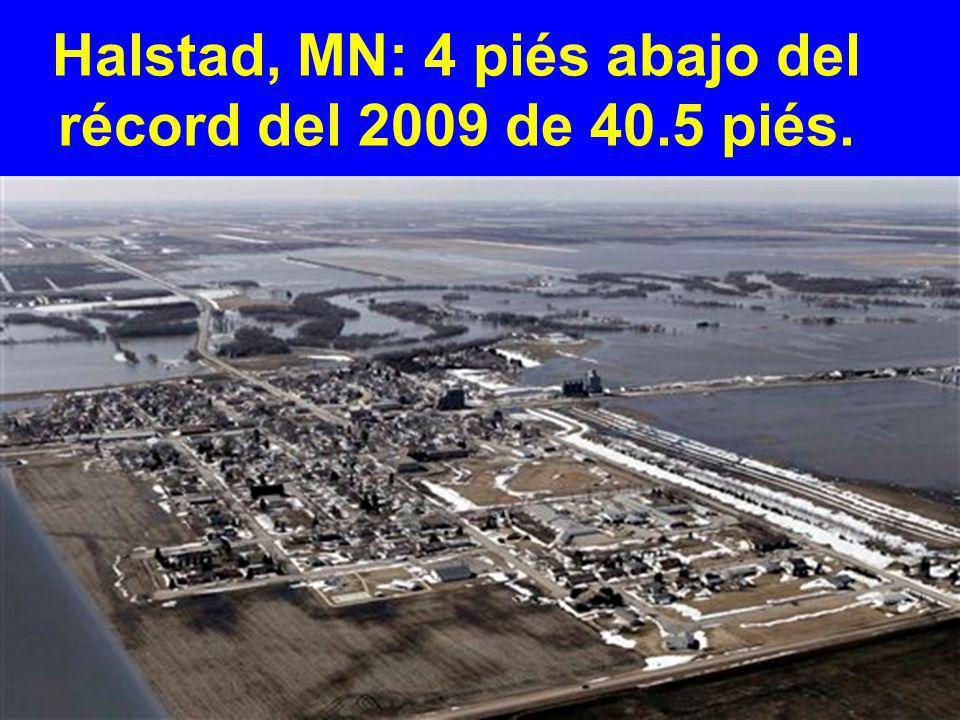 Halstad, MN: 4 piés abajo del récord del 2009 de 40.5 piés.