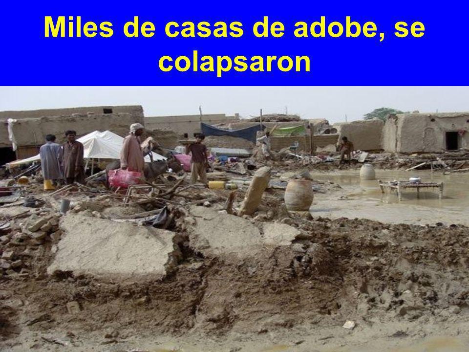 Miles de casas de adobe, se colapsaron