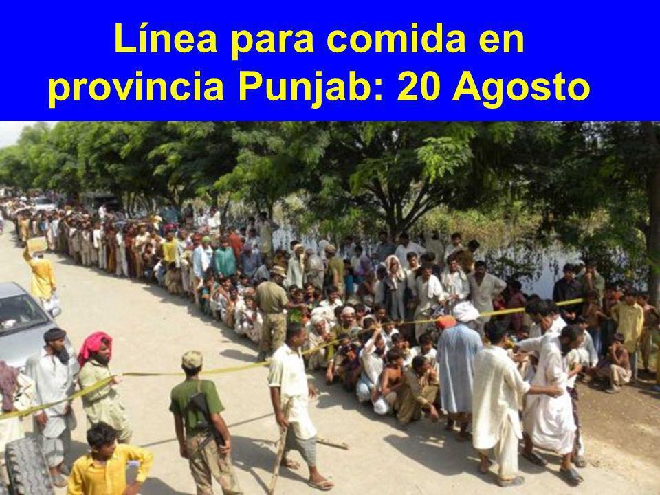 Línea para comida en provincia Punjab: 20 Agosto
