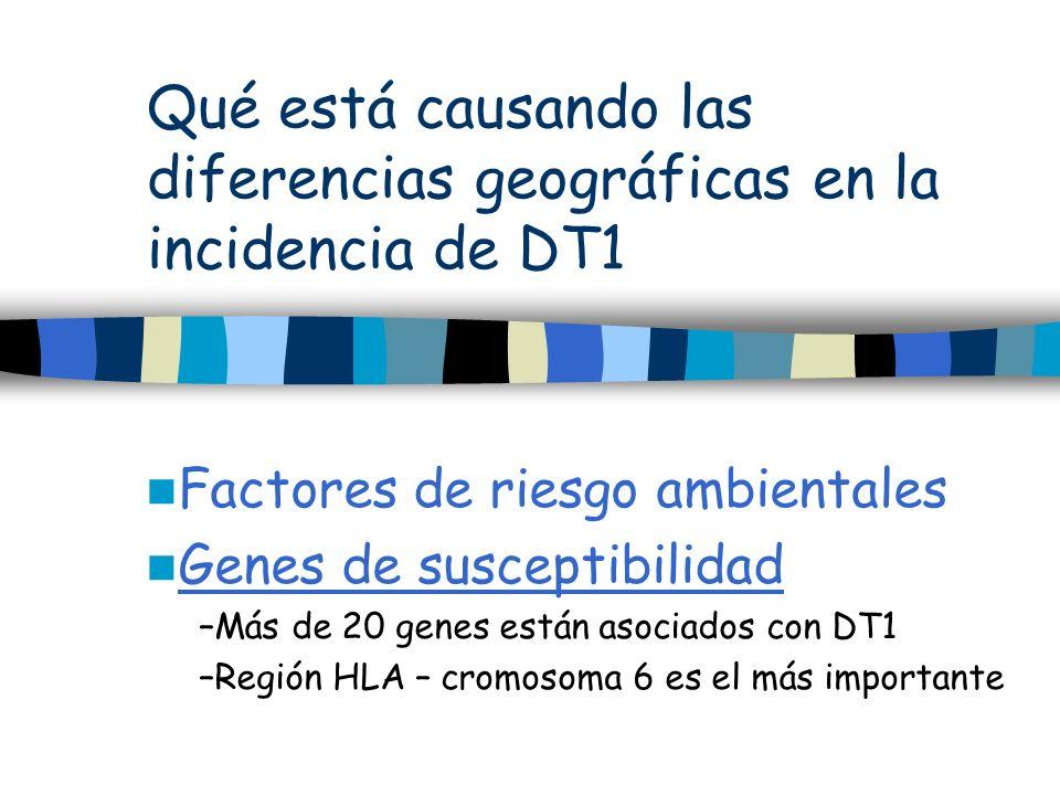 Qué está causando las diferencias geográficas en la incidencia de DT1