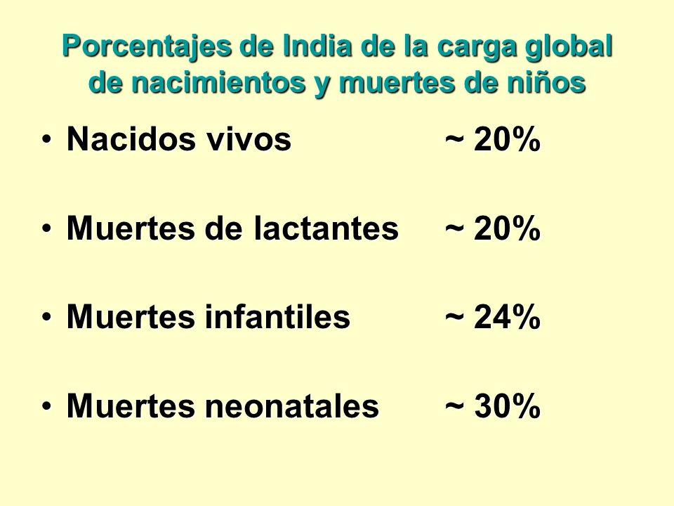 Muertes de lactantes ~ 20% Muertes infantiles ~ 24%
