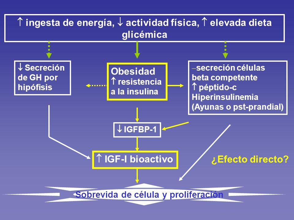  ingesta de energía,  actividad física,  elevada dieta glicémica