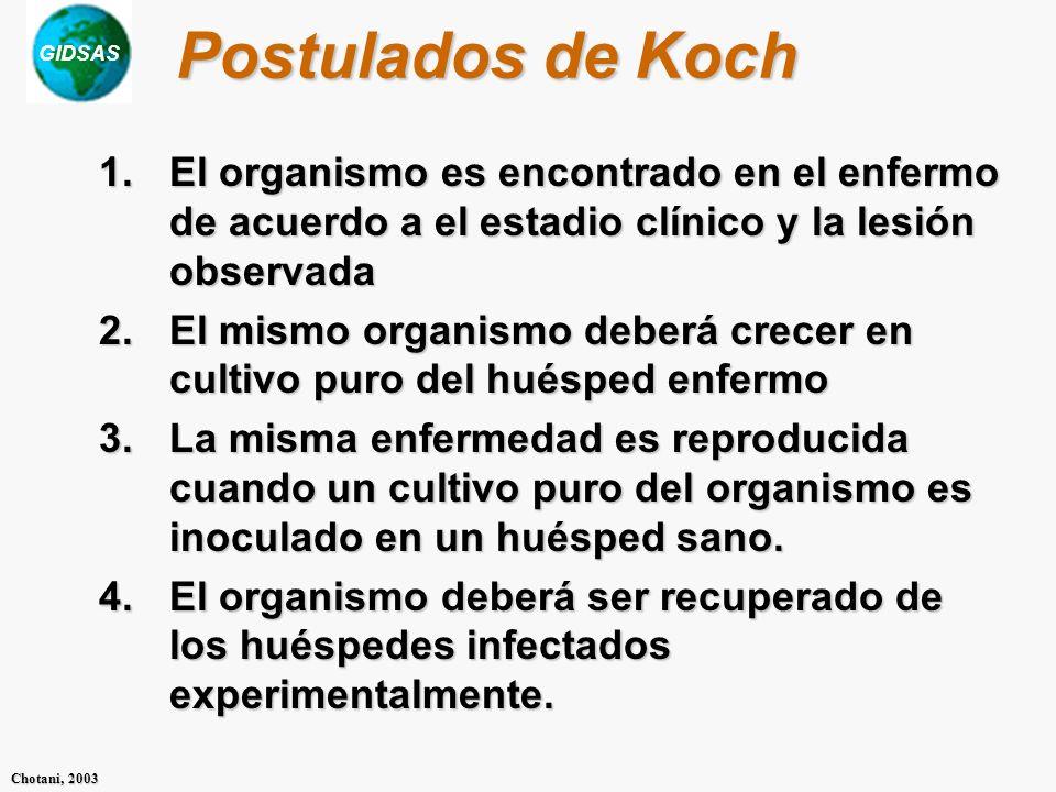 Postulados de Koch El organismo es encontrado en el enfermo de acuerdo a el estadio clínico y la lesión observada.