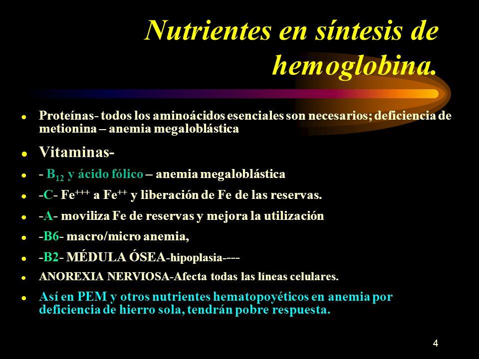 Nutrientes en síntesis de hemoglobina.