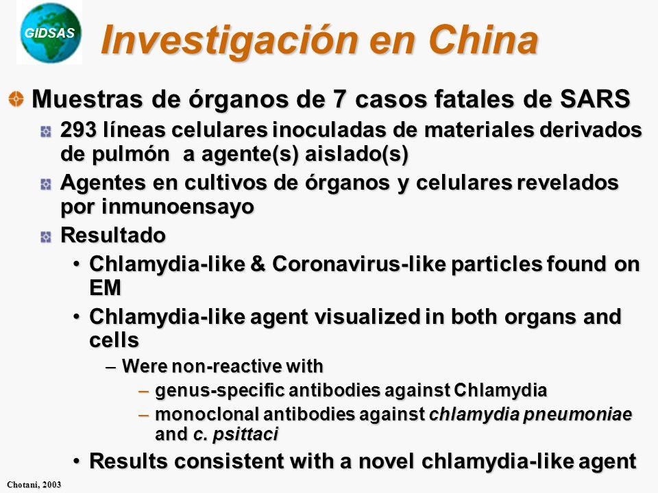 Investigación en China