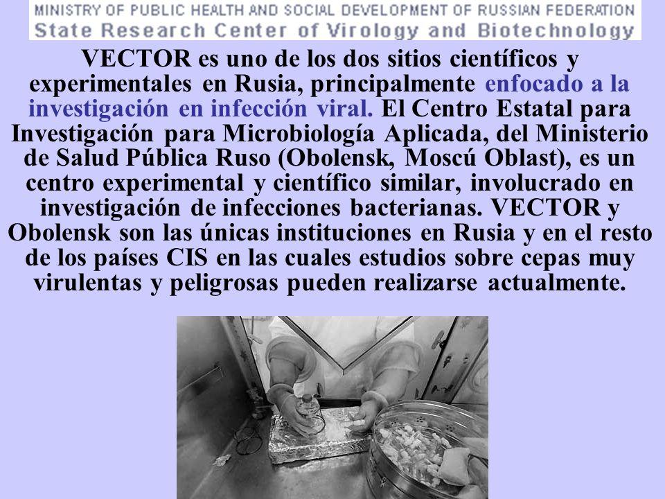 VECTOR es uno de los dos sitios científicos y experimentales en Rusia, principalmente enfocado a la investigación en infección viral.