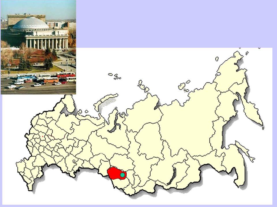 Ahora, Rusia está lista para los brotes de enfermedades infecciosas, no para la epidemia a largo plazo de las enfermedades no infecciosas.