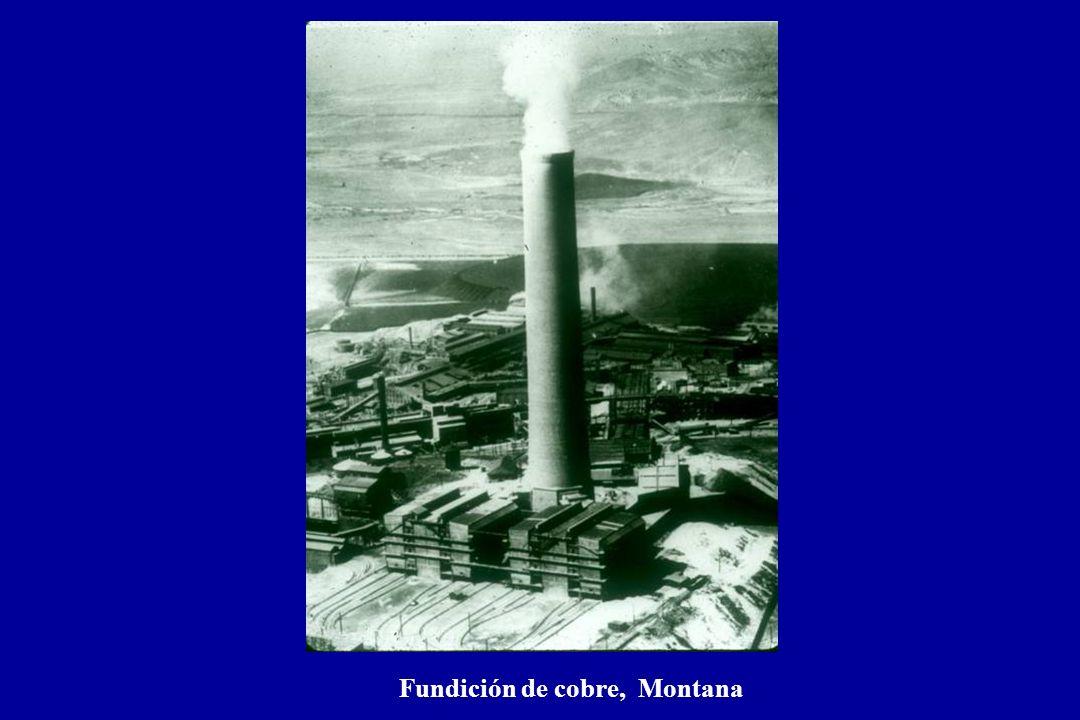 Fundición de cobre, Montana