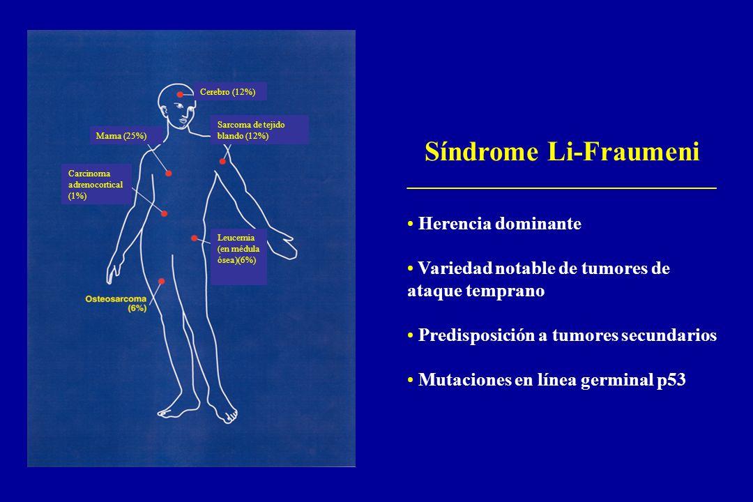 Síndrome Li-Fraumeni _________________________________