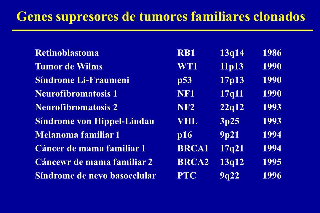 Genes supresores de tumores familiares clonados