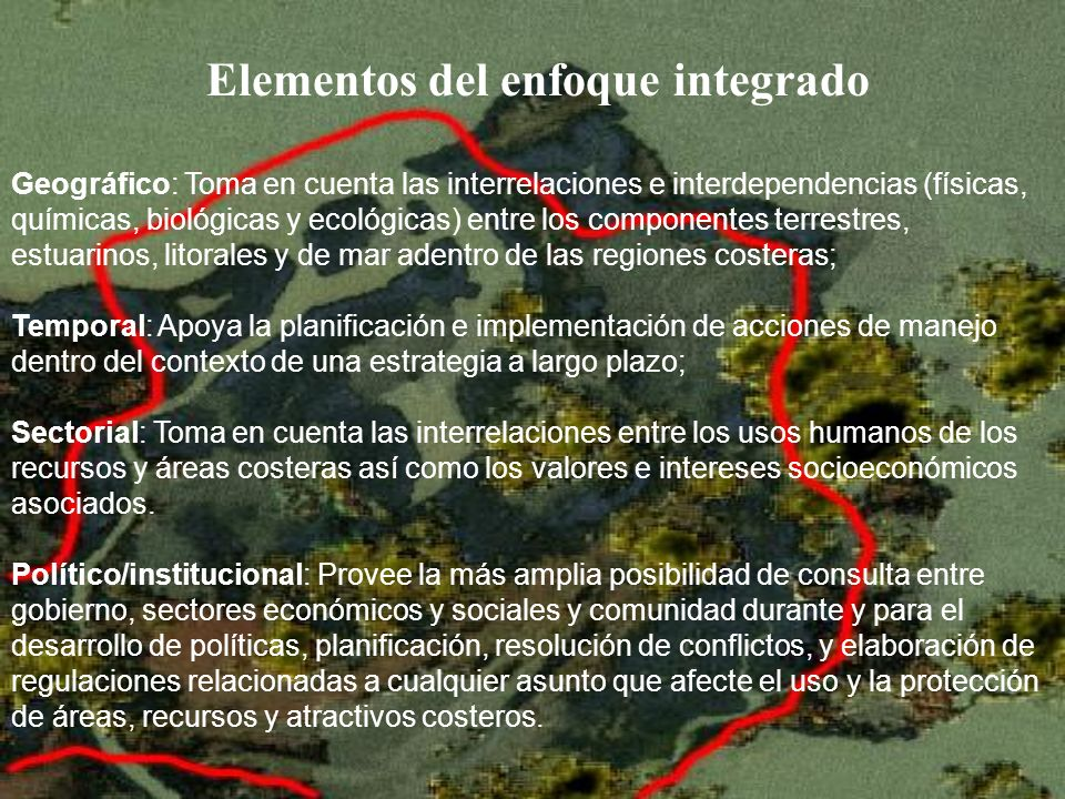 Elementos del enfoque integrado