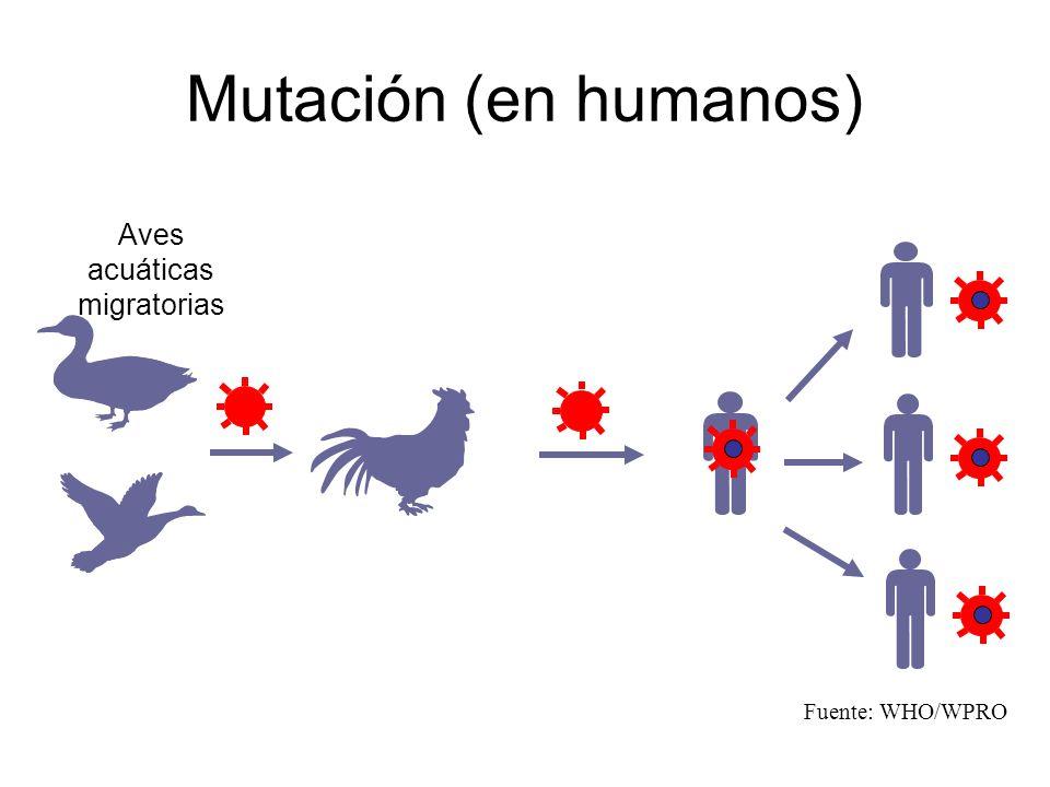 Aves acuáticas migratorias