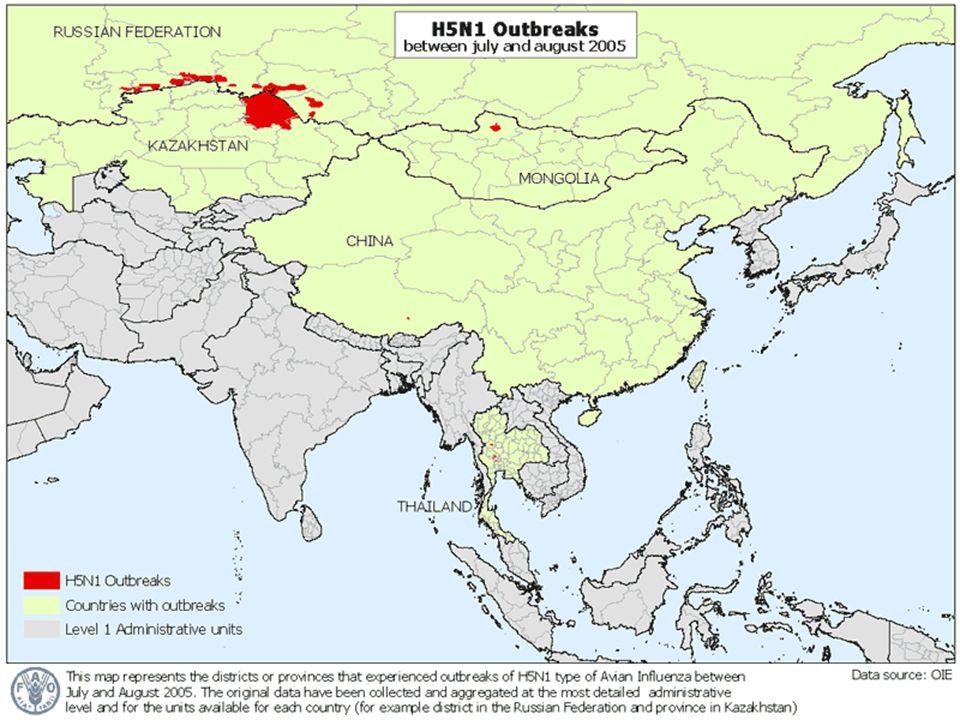 Brotes de H5N1 entre Julio y Diciembre del 2005