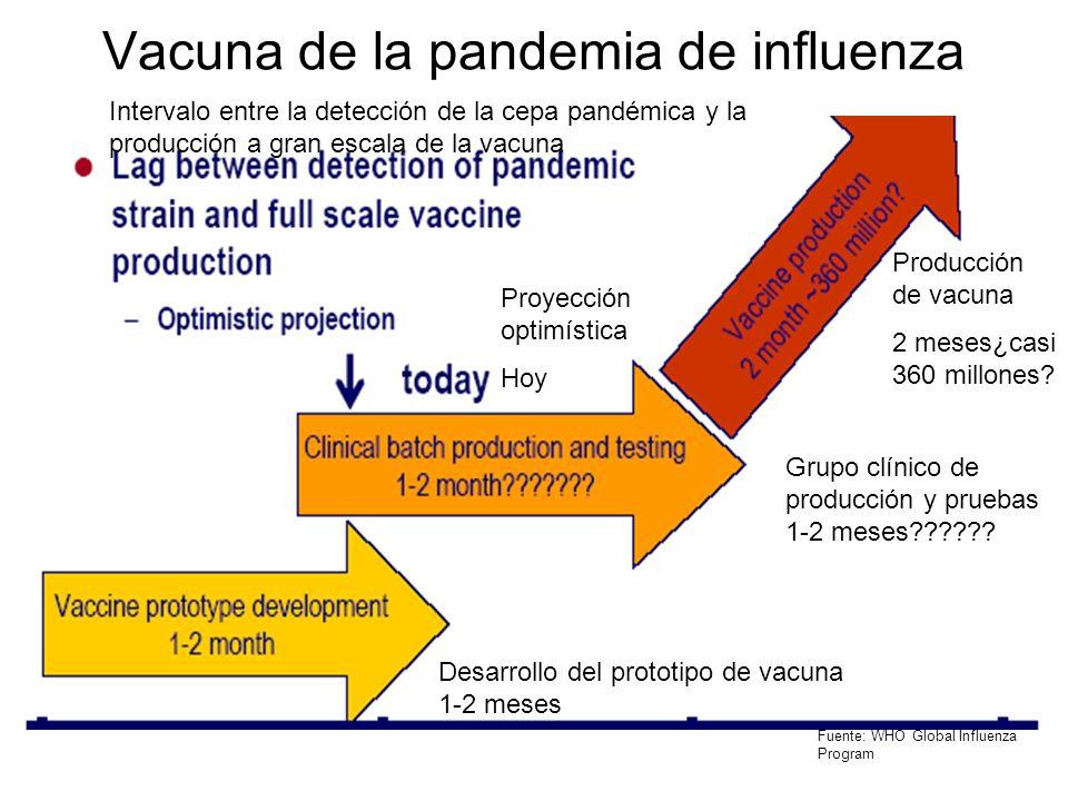 Vacuna de la pandemia de influenza