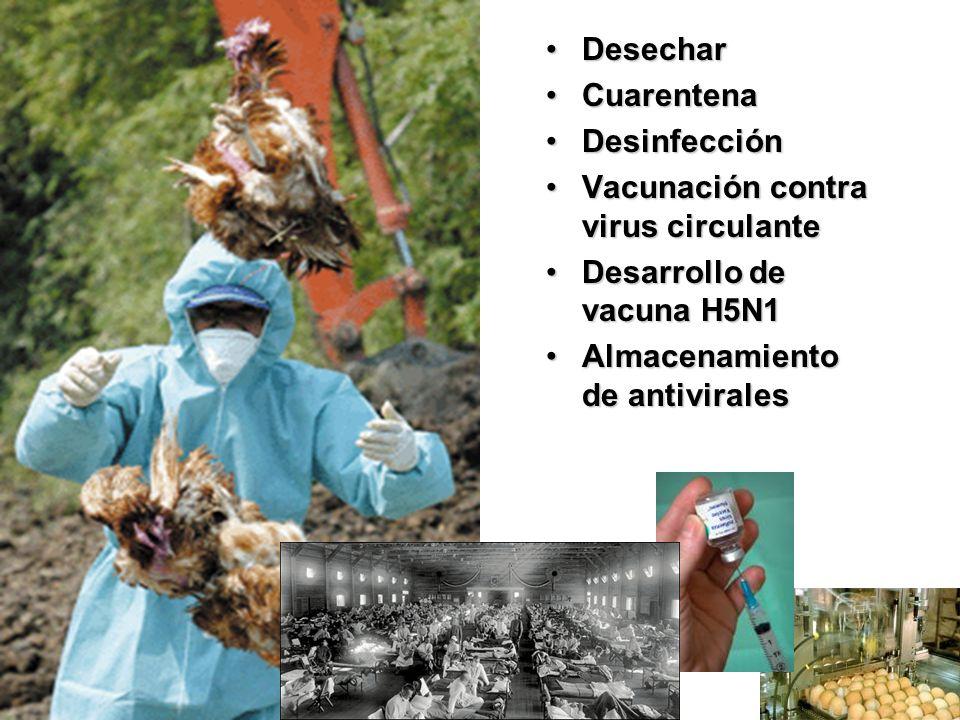 Desechar Cuarentena. Desinfección. Vacunación contra virus circulante. Desarrollo de vacuna H5N1.