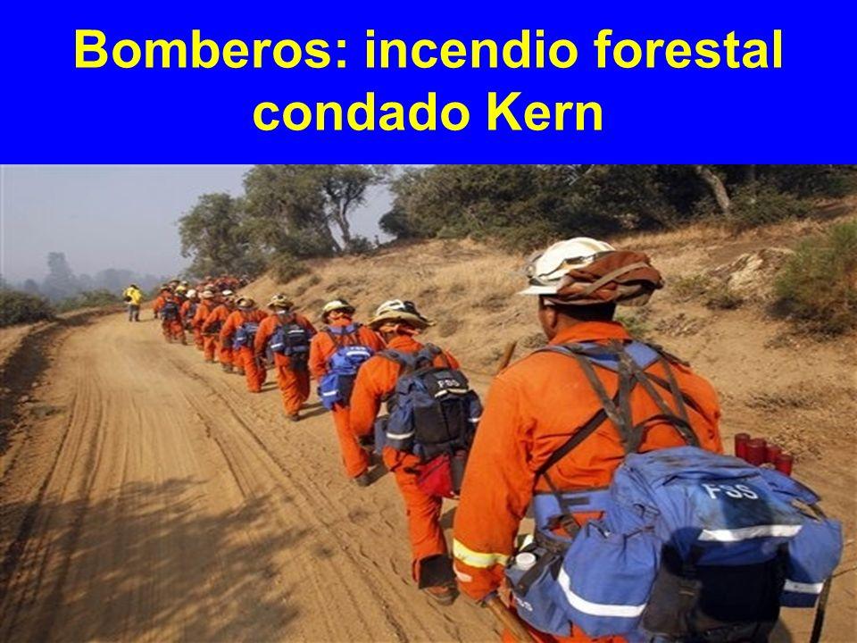 Bomberos: incendio forestal condado Kern